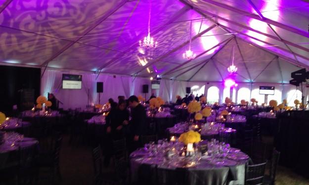 Purple Tent 2